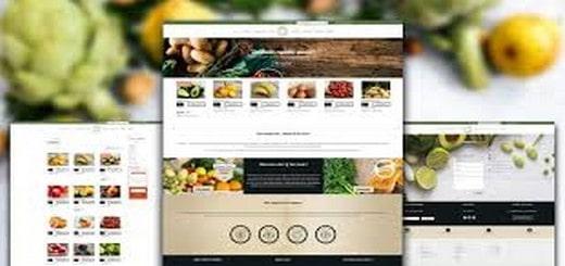 Conseils design pour sites web